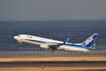 mojioさんが、羽田空港で撮影した全日空 737-881の航空フォト(写真)