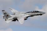Talon.Kさんが、オシアナ海軍航空基地アポロソーセックフィールドで撮影したノースロップ・グラマン F-14D Tomcatの航空フォト(写真)