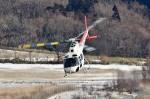 Dojalanaさんが、函館空港で撮影した日本法人所有 AS350B Ecureuilの航空フォト(写真)