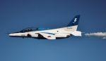 こびとさんさんが、入間飛行場で撮影した航空自衛隊 T-4の航空フォト(写真)