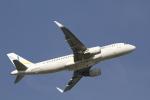 とらとらさんが、成田国際空港で撮影したバニラエア A320-216の航空フォト(飛行機 写真・画像)