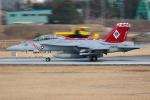 AkiChup0nさんが、厚木飛行場で撮影したアメリカ海軍 F/A-18F Super Hornetの航空フォト(写真)