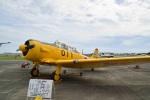 rail_airlineさんが、静浜飛行場で撮影した航空自衛隊 T-6F Texanの航空フォト(写真)
