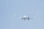 you55さんが、米子空港で撮影した全日空 737-781の航空フォト(写真)