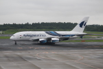 OMAさんが、成田国際空港で撮影したマレーシア航空 A380-841の航空フォト(飛行機 写真・画像)