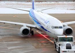 タミーさんが、小松空港で撮影した全日空 737-881の航空フォト(写真)