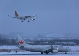タミーさんが、小松空港で撮影したタイガーエア台湾 A320-232の航空フォト(写真)