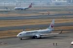 ハピネスさんが、羽田空港で撮影した日本航空 737-846の航空フォト(飛行機 写真・画像)