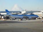TUILANYAKSUさんが、ジョン・F・ケネディ国際空港で撮影したアルゼンチン航空 A330-203の航空フォト(写真)