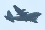 中村 昌寛さんが、千歳基地で撮影した航空自衛隊 C-130H Herculesの航空フォト(写真)