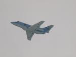 ここはどこ?さんが、札幌飛行場で撮影した航空自衛隊 U-125A(Hawker 800)の航空フォト(写真)