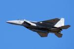 yabyanさんが、名古屋飛行場で撮影した航空自衛隊 F-15DJ Eagleの航空フォト(飛行機 写真・画像)