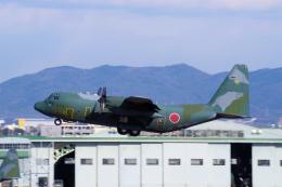 yabyanさんが、中部国際空港で撮影した航空自衛隊 C-130H Herculesの航空フォト(飛行機 写真・画像)
