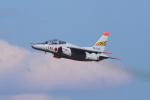 中部国際空港 - Chubu Centrair International Airport [NGO/RJGG]で撮影された航空自衛隊 - Japan Air Self-Defense Forceの航空機写真