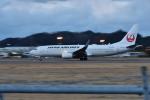 いんちょーさんが、松山空港で撮影した日本航空 737-846の航空フォト(写真)