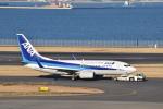 pepeA330さんが、羽田空港で撮影した全日空 737-781の航空フォト(写真)