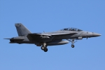 たろりんさんが、厚木飛行場で撮影したアメリカ海軍 F/A-18F Super Hornetの航空フォト(写真)