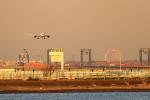 Rundy's Airgraphyさんが、羽田空港で撮影した全日空 787-8 Dreamlinerの航空フォト(写真)