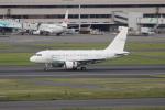 OMAさんが、羽田空港で撮影したGCLポリー・エナジー・ホールディングス A318-112 CJ Eliteの航空フォト(写真)