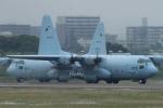Hottyさんが、名古屋飛行場で撮影した航空自衛隊 C-130H Herculesの航空フォト(写真)