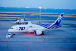 カヤノユウイチさんが、羽田空港で撮影した全日空 787-8 Dreamlinerの航空フォト(飛行機 写真・画像)