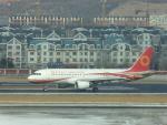 walker2000さんが、大連周水子国際空港で撮影した成都航空 A320-214の航空フォト(写真)