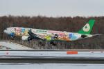 ウッディーさんが、新千歳空港で撮影したエバー航空 A330-302Xの航空フォト(写真)