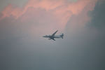 はるさんが、北九州空港で撮影した全日空 787-8 Dreamlinerの航空フォト(写真)