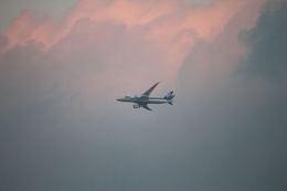 はるさんが、北九州空港で撮影した全日空 787-8 Dreamlinerの航空フォト(飛行機 写真・画像)