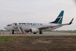 DREAMWINGさんが、グランドフォークス国際空港で撮影したウェストジェット 737-7CTの航空フォト(飛行機 写真・画像)