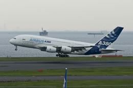 羽田空港 - Tokyo International Airport [HND/RJTT]で撮影されたエアバス - Airbus Industrie [VK/AIB]の航空機写真