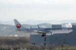 湖景さんが、新千歳空港で撮影したJALエクスプレス 737-846の航空フォト(写真)