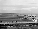tokisimoさんが、羽田空港で撮影したパンアメリカン航空 377-10-26 Stratocruiserの航空フォト(写真)