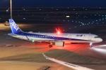 えぬえむさんが、羽田空港で撮影した全日空 A321-272Nの航空フォト(写真)