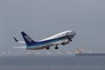 さんたまるたさんが、中部国際空港で撮影した全日空 737-781の航空フォト(写真)
