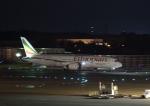 Daidai☆彡さんが、成田国際空港で撮影したエチオピア航空 787-8 Dreamlinerの航空フォト(写真)