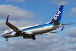 セブンさんが、伊丹空港で撮影した全日空 737-881の航空フォト(写真)