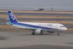 HEATHROWさんが、羽田空港で撮影した全日空 A320-211の航空フォト(写真)
