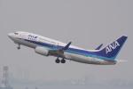 HEATHROWさんが、羽田空港で撮影した全日空 737-781の航空フォト(写真)