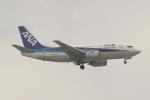OMAさんが、那覇空港で撮影したANAウイングス 737-54Kの航空フォト(飛行機 写真・画像)