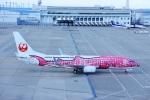 KIMISTONERさんが、中部国際空港で撮影した日本トランスオーシャン航空 737-8Q3の航空フォト(写真)