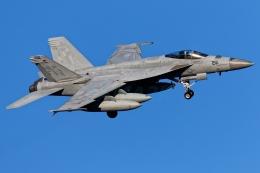 多摩川崎2Kさんが、厚木飛行場で撮影したアメリカ海軍 F/A-18E Super Hornetの航空フォト(飛行機 写真・画像)