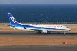 SIさんが、中部国際空港で撮影した全日空 737-881の航空フォト(写真)