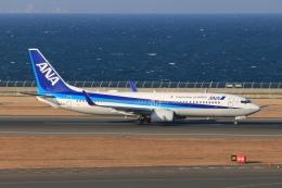 SIさんが、中部国際空港で撮影した全日空 737-881の航空フォト(飛行機 写真・画像)