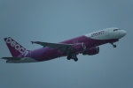 nobu2000さんが、那覇空港で撮影したピーチ A320-214の航空フォト(写真)