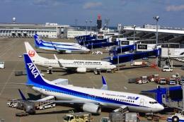 契丹さんが、中部国際空港で撮影した全日空 737-881の航空フォト(飛行機 写真・画像)