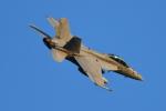 パラノイアさんが、厚木飛行場で撮影したアメリカ海軍 F/A-18F Super Hornetの航空フォト(写真)