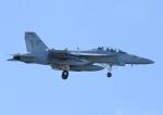 じーく。さんが、嘉手納飛行場で撮影したアメリカ海軍 EA-18G Growlerの航空フォト(飛行機 写真・画像)