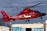 グリスさんが、東京ヘリポートで撮影した東京消防庁航空隊 AS365N3 Dauphin 2の航空フォト(写真)