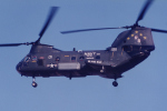 banshee02さんが、厚木飛行場で撮影したアメリカ海軍 HH-46Dの航空フォト(写真)